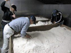 米麹を作るために米に麹菌を生やします
