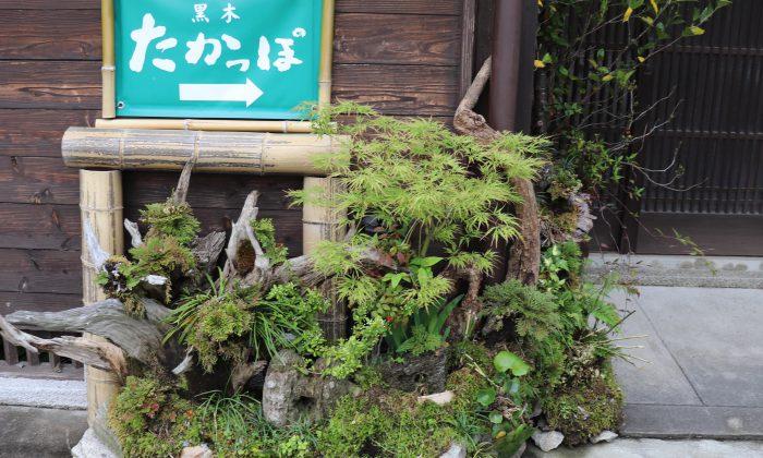 【夢みたカンパニー】福岡県八女市で田舎料理を食べるならここ!!黒木たかっぽ