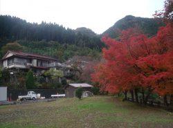 白糸旅館を背景に秋の風景